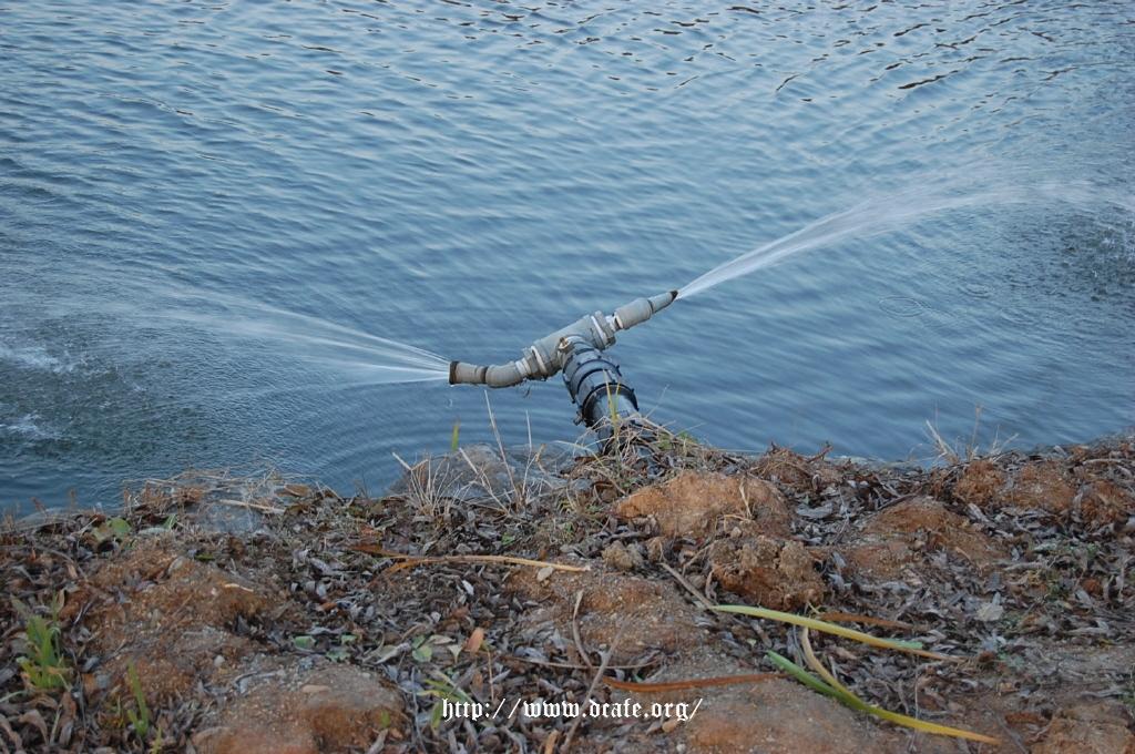 이 연못에는 이렇게 수도로 계속 물을 공급하고 있었다